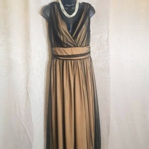Newport News Mesh Nude illusion dress sz 6